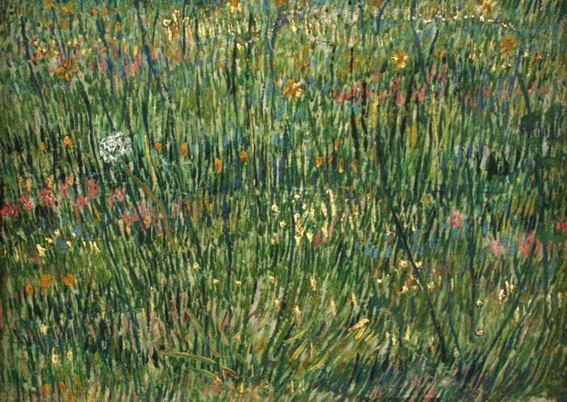 Grasgrond
